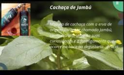 Cachaça de Jambu direto do Belém do Pará 700 ml