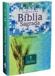 Bíblia Sagrada Letra Gigante Nova Tradução Linguagem De Hoje