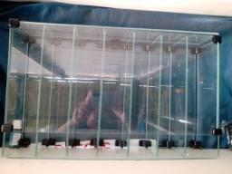 Título do anúncio: Porta cigarros em vidro temperado