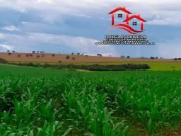 Fazenda Na Região De Patos De Minas / MG