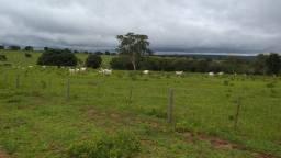 Título do anúncio: Fazenda/Sítio/Chácara para venda possui 999 metros quadrados
