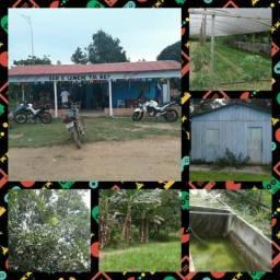 Sitio na br 174 comunidade 120 vendo ou troco