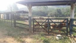 Belíssima fazenda em João Neiva.