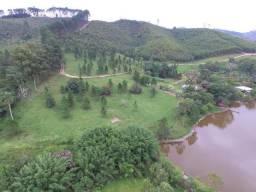 Sitio em Igaratá com plantação de eucaliptos
