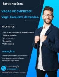 Título do anúncio: Vagas de executivo de vendas interno