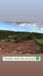 Terreno 15x70 m no Alto Vincano