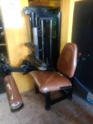 Título do anúncio: Cadeira flexora