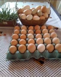 Título do anúncio: Ovos caipira galados