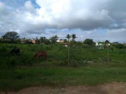 Vendo terreno no loteamento São Benedito Guajará
