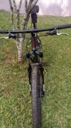 Bicicleta Soul