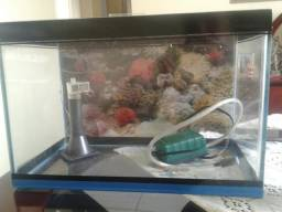Aquario completo com motor