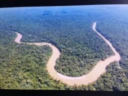 Área de 122.000 hectares na amazônia
