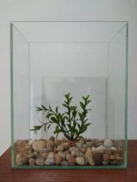 Aquário Beteira 5 Litros com Pedra de Rio + Planta Artificial (20 x 11,5 x 25 cm)