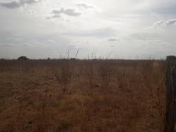 Fazenda com 380 hectares na Chapada de apodi