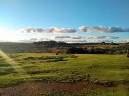 Fazenda 607 ha - Herval - Rio Grande do Sul
