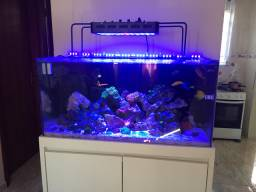 Aquario Marinho 200 litros