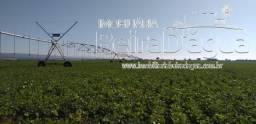 Fazenda 600 Hectares com Pivo Central