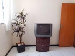 Vendo TV e criado em mogno