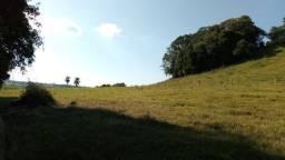 Fazenda para pecuária com 120 alqueires, beira do alagado!!