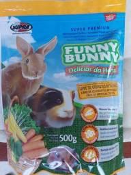 Funny Bunny Coelho e Roedor