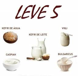 Kefir De Leite, Água, Csy, Filmjolk, Villi ? Leve 5