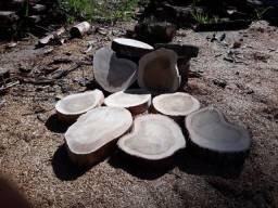 Bolachas de madeira de cedro