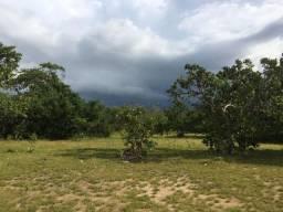 Fazenda com 450 hectares no município do Alto Alegre/RR, ler descriçao do anuncio