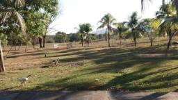 Fazenda 1.200 hectares á 20 km de Cuiabá