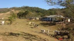 Fazenda 540ha por R$ 700.000 - Unaí/MG