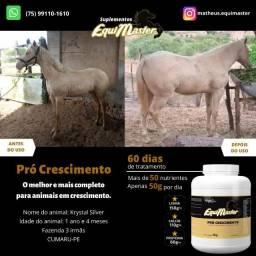 Suplementos Equimaster - Cavalos - Potros - Equinos