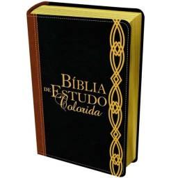 Bíblia de Estudo Colorida - NVI - Letra Grande ? Vinho