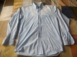 camisa lacoste jeans