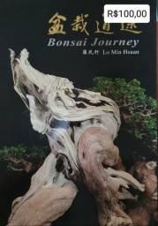Bonsai Journey