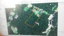 Colônia 260 hectares