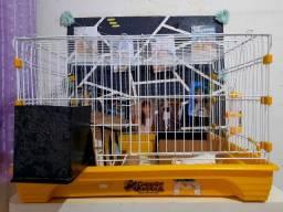 Gaiola para hamster ou porquinho 60×60 cm
