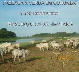 Fazenda a venda em Corumbá-MS Área de 1.400 Hectares