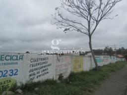 Terreno para alugar em Cajuru, Curitiba cod:14653001