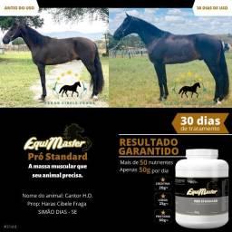 Suplementos Equimaster - Cavalo - Equinos