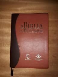 Biblia de estudo do pregador