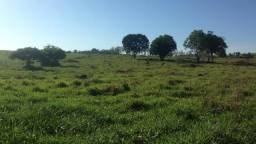 Terreno Brauninha - Belo Oriente