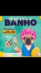 Título do anúncio: Pet Shop Banho e Tosa