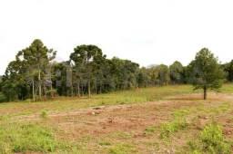 Terreno à venda em Fazenda souza, Caxias do sul cod:302