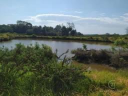 Fazenda pecuária santa cecilia do pavão pr
