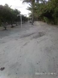 Vendo sitio em Alagoinhas