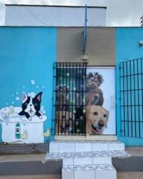 Título do anúncio: Passo um lindo Pet Shop Completo