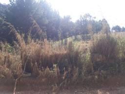 Terreno 12x30 Jd Alto Pinheiros