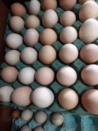 Título do anúncio: Vendo ovos caipira pente com 30 unds a 23,00