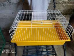 Título do anúncio: Porquinho da Índia com gaiola