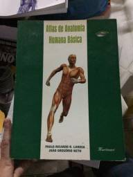 Livro Anatomia humana básica