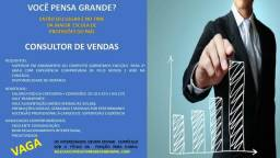 Consultor de vendas Interna